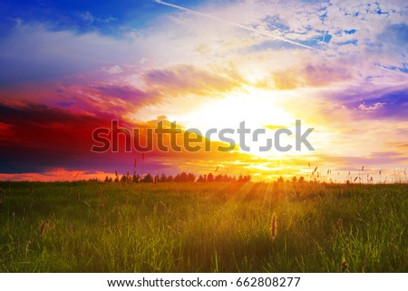 Beautiful sunset over the green large field. #662808277