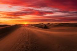 Beautiful sunset over the sand dunes in the Arabian Empty Quarter Desert, UAE. Rub' al Khali