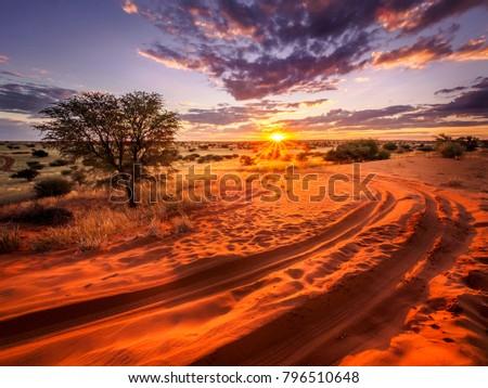 Beautiful sunset over the scenic kalahari-landscape in Namibia