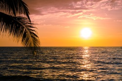 Beautiful sunset over the sea with palm tree on the tropical beach and blue sky for travel in holiday relax time, photo style vintage