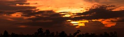 Beautiful sunset sky. Cloudscape. Golden sunset above silhouette tree. Panorama view of dark clouds and orange sky. Beauty in nature. Dramatic sunset sky. Heaven sky. Dusk and dawn concept.