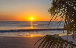Beautiful sunset tropical beach with palm tree for travel and vacation in holiday relax time. Playa Flamingo in Guanacaste, Costa Rica. Central America.