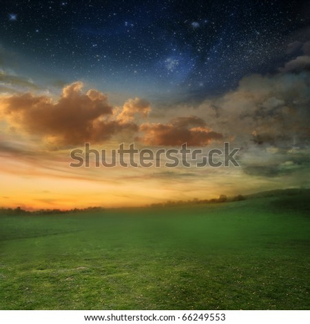 beautiful sunset with a green meadow