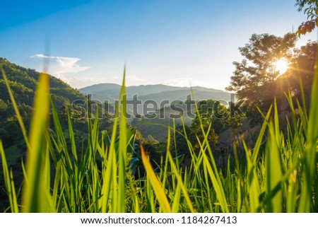 Beautiful sunset with blue sky and mountain natural background. #1184267413