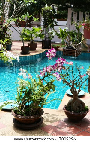 Beautiful swimming pool in the courtyard of a house in Thailand.