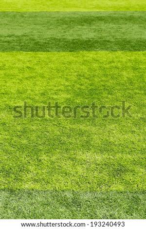 beautiful tab of fresh green grass for football sport, football field, soccer field
