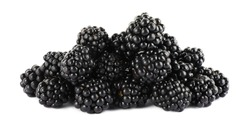 Beautiful tasty ripe blackberries on white background