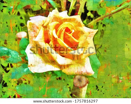 Beautiful tea rose (Rosa odorata) flower with lush petals in a the style of oil painting Fauvism