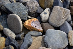 Beautiful textured red stone similar to volcanic. I lay among other gray,blue, and white rocks of various sizes on a pebbly beach. Textured rocky background.