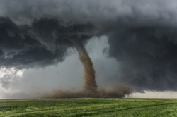 Beautiful tornado over a green field
