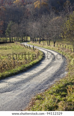 Beautiful tree lined dirt or unpaved S curve road with rustic fence