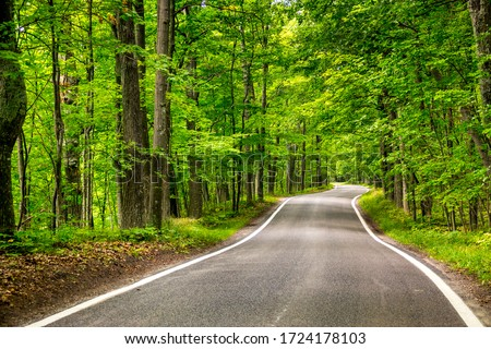 Beautiful tree lined road in the Tunnel of Trees on a drive through Emmet County from Harbor Springs north to Petoskey on highway M-119, Michigan