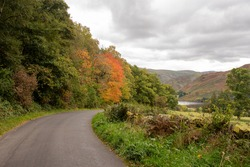 Beautiful Tree Lined Winding Road Leading down to Ullswater Lake in Autumn. 2020