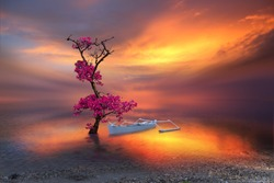 beautiful tree on the beach like a ballerina