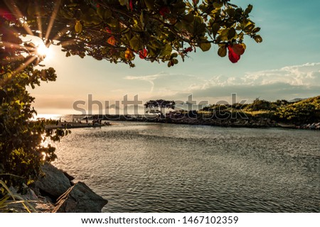Beautiful trees and the woods surrounding Itaipu Channel while sunbeams cut through leaves in a colorful and peaceful afternoon, Niteroi, Rio de Janeiro, Brazil. - Image #1467102359