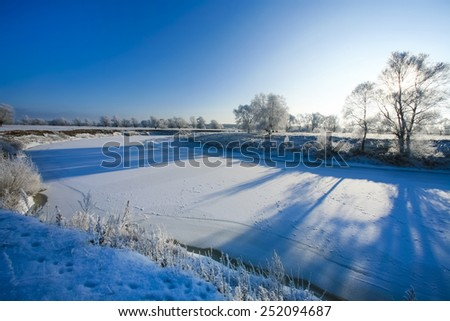 Beautiful trees in white frost on the background of blue sky