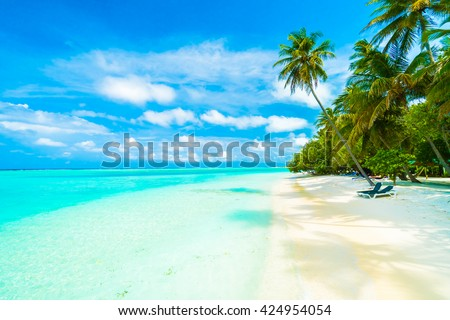Beautiful tropical beach and sea in maldives island with coconut palm tree and blue sky background #424954054