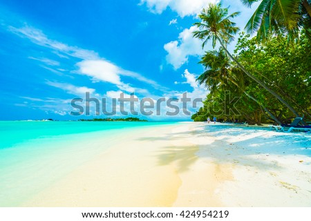 Beautiful tropical beach and sea in maldives island with coconut palm tree and blue sky background #424954219