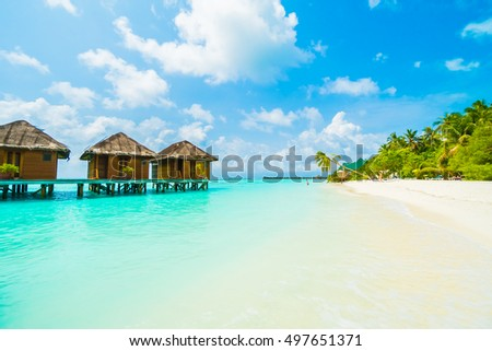 Beautiful tropical beach and sea with coconut palm tree on blue sky in Maldives island - Boost up color Processing #497651371