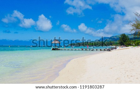 Beautiful tropical beach of Mauritius island, one of the best sea travel destination in the world