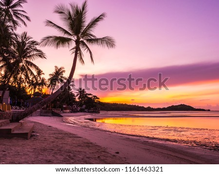 Beautiful tropical beach sea and ocean with coconut palm tree at sunrise time for travel and vacation #1161463321