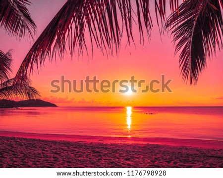 Beautiful tropical beach sea and ocean with coconut palm tree at sunrise time for travel and vacation #1176798928