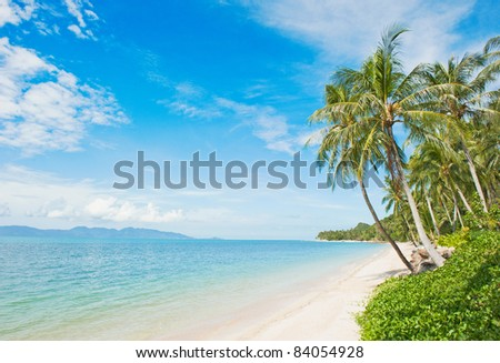 Beautiful tropical beach with coconut palm