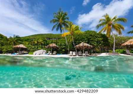 Beautiful tropical beach with palm trees, white sand, turquoise ocean water and blue sky at British Virgin Islands in Caribbean #429482209