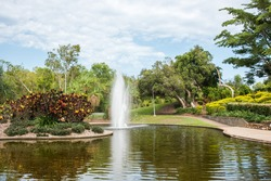 Beautiful tropical flora with flowing water fountain in pond at the Jingili Water Gardens in the Northern Territory of Australia