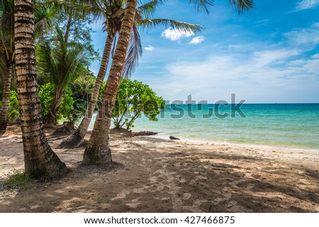 Beautiful tropical island beach - Koh Kood, Trat Thailand #427466875