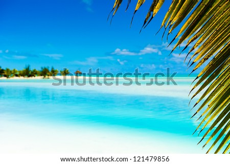 Beautiful Tropical Lagoon framed with a palm tree