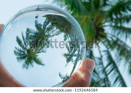 Beautiful Tropical Landscape seen through a Glass Orb. Glass orb by the sea and beach with waves crashing on shore. #1192646584