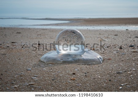 Beautiful Tropical Landscape seen through a Glass Orb. Glass orb by the sea and beach with waves crashing on shore. #1198410610