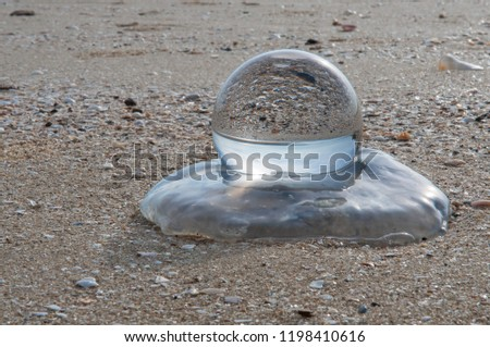 Beautiful Tropical Landscape seen through a Glass Orb. Glass orb by the sea and beach with waves crashing on shore. #1198410616