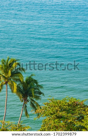 Beautiful tropical nature of beach sea ocean bay around coconut palm tree for leisure vacation