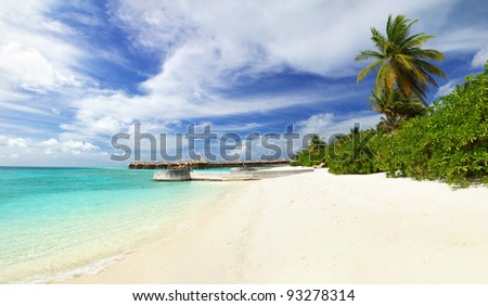 Beautiful tropical paradise in Maldives with coco palms hanging over the white and turquoise sea