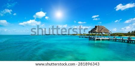 beautiful tropical sea #281896343