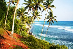 Beautiful tropical view of the blue sea with waves, palm trees, green vegetation and rocky coast with red land. Landscape in Sri Lanka