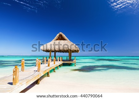 Beautiful tropical white sandy beach in Cap Cana, Dominican Republic #440790064