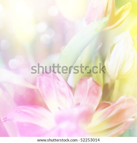 beautiful tulips made with color filters and glitters
