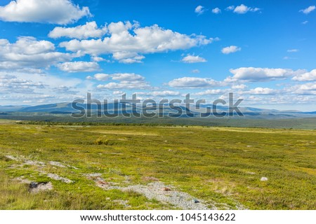 Beautiful tundra landscape view with mountains in the horizon at summer
