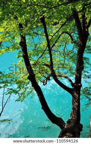 Beautiful turquoise lake in Plitvice National Park, Croatia