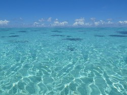 Beautiful turquoise sea with sun reflecting on the undulating water, blue sky and white clouds above. Mauritius.