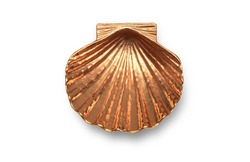 Beautiful underside of a scallop painted with metallic paint in an old golden tone