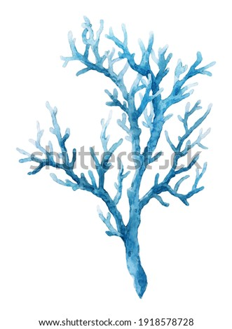 Beautiful underwater composition with watercolor sea life blue coral. Stock illustration. Stockfoto ©