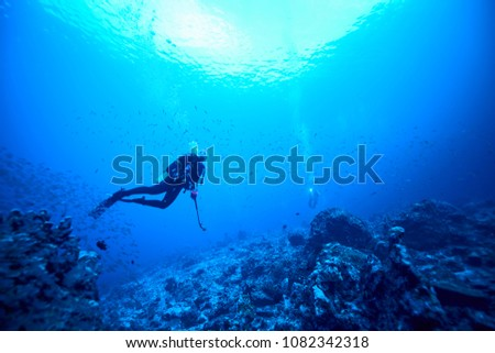 beautiful underwater world scuba drive with coral reef in the deep blue ocean with colorful fish and marine life #1082342318