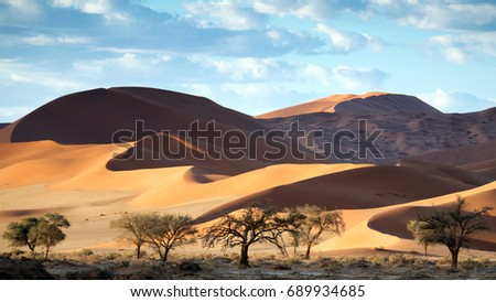 Shutterstock Beautiful undulating dunes in the Namb desert for WideScreen 4K Wallpapers