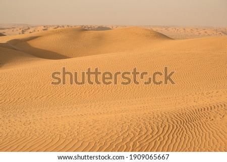 Beautiful untouched sand dunes in desert Stock photo ©