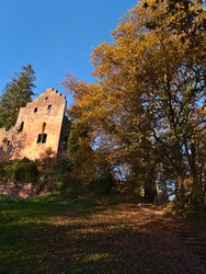 Beautiful upright view of historic castle ruin Burg Zavelstein in Bad Teinach-Zavelstein, Black Forest, Germany with stairs of stones, foliage, colorful trees and blue sky in autumn season.