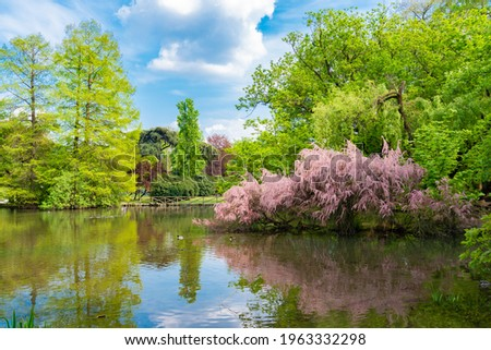Beautiful urban garden located in Parco Sempione (meaning: Sempione Park) in Milan, Italy. Colorful flowers, trees and white clouds reflecting in the water. Foto d'archivio ©